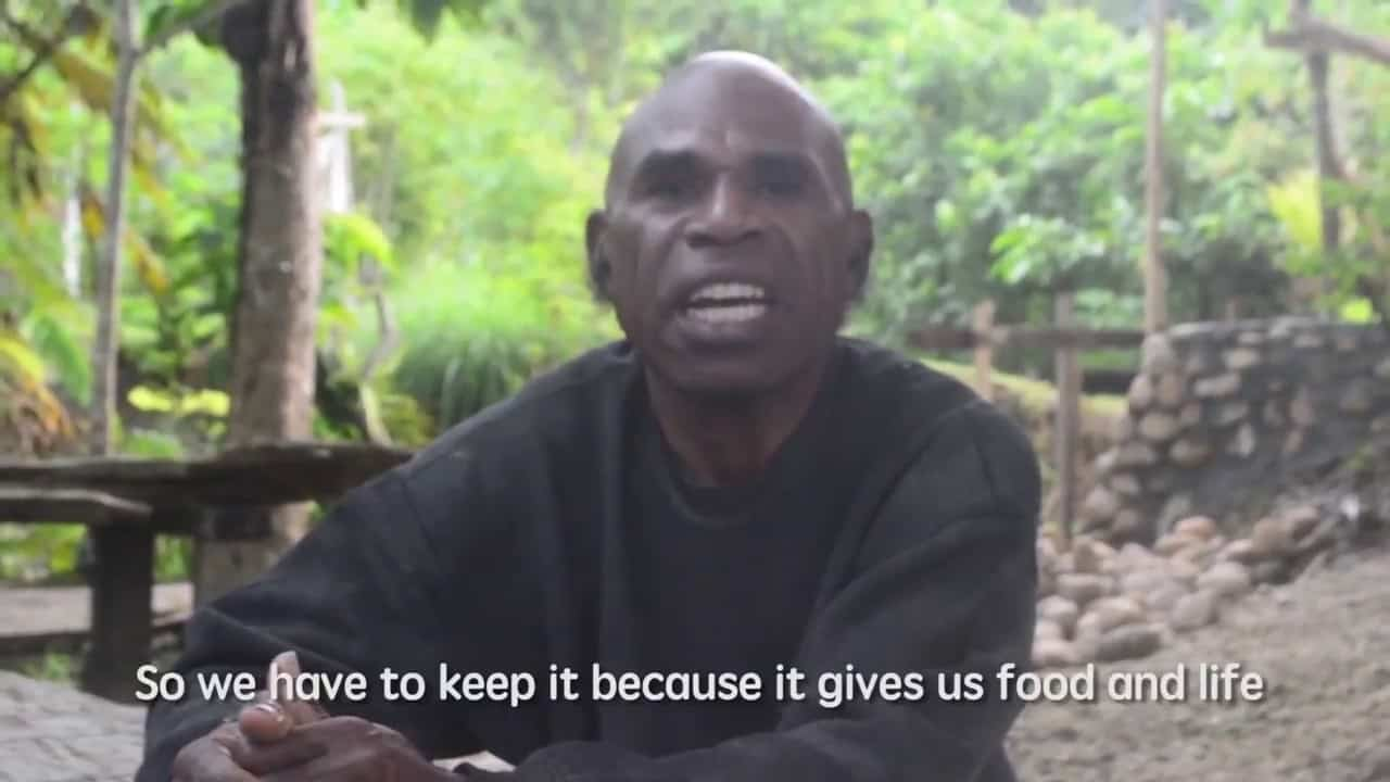Video : Forest for Ecotourim, Papuan Way